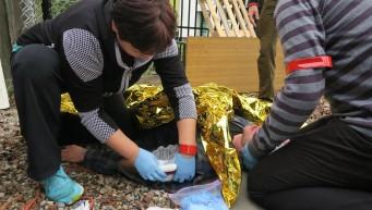 22.opatrywanie ran, pierwsza pomoc przy złamaniu, bezpieczeństwo własne